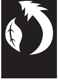 BPI-Logo-300