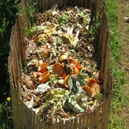 New Years Resolution with Less Waste by composting inedible food.